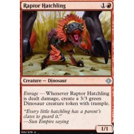 Raptor Hatchling