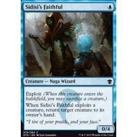 Sidisi's Faithful