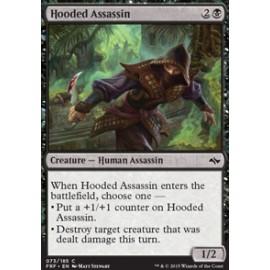 Hooded Assassin