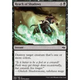 Reach of Shadows