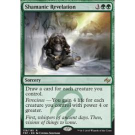 Shamanic Revelation