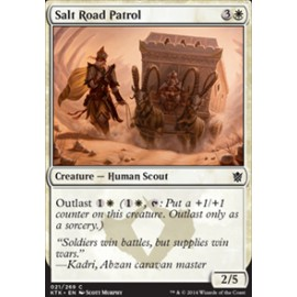 Salt Road Patrol