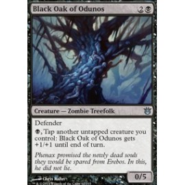 Black Oak of Odunos