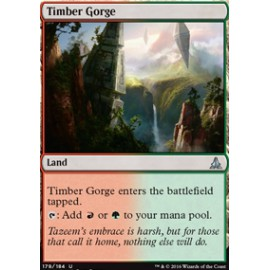 Timber Gorge