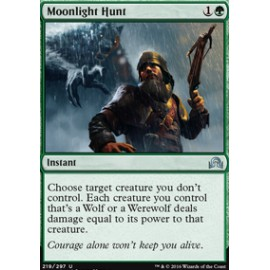 Moonlight Hunt