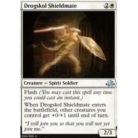 Drogskol Shieldmate