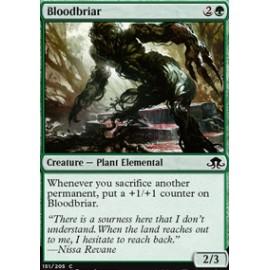 Bloodbriar