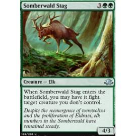Somberwald Stag