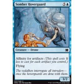 Somber Hoverguard
