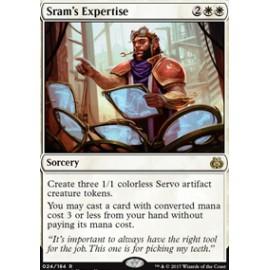 Sram's Expertise