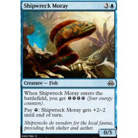 Shipwreck Moray