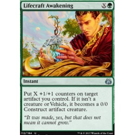 Lifecraft Awakening