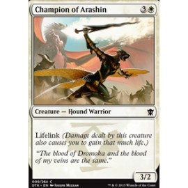 Champion of Arashin