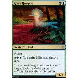 River Hoopoe
