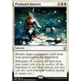 Profound Journey