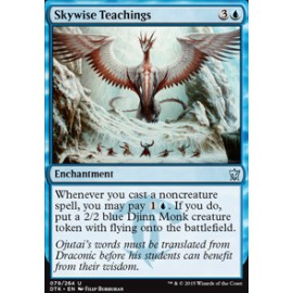Skywise Teachings