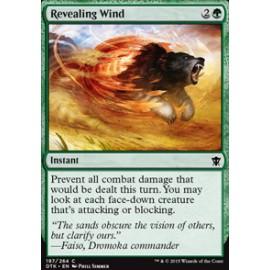 Revealing Wind