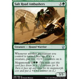 Salt Road Ambushers