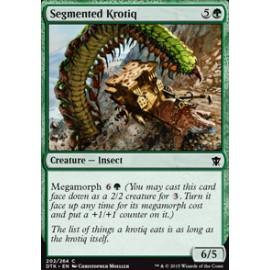 Segmented Krotiq