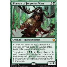 Shaman of Forgotten Ways