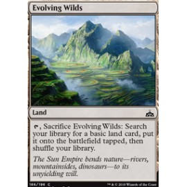 Evolving Wilds FOIL