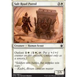 Salt Road Patrol
