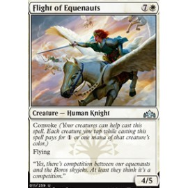 Flight of Equenauts