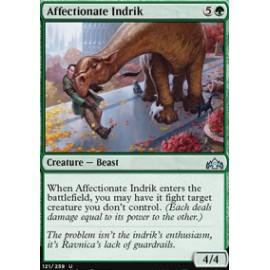 Affectionate Indrik