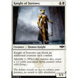 Knight of Sorrows FOIL