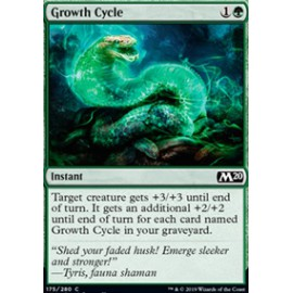 Growth Cycle FOIL