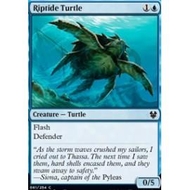 Riptide Turtle FOIL