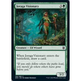 Joraga Visionary