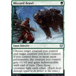 Blizzard Brawl