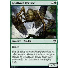 Gnottvold Recluse
