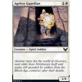 Ageless Guardian