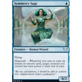 Symmetry Sage
