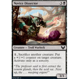 Novice Dissector
