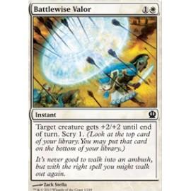 Battlewise Valor