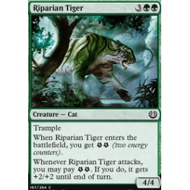 Riparian Tiger