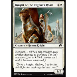 Knight of the Pilgrim's Road
