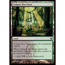 Golgari Rot Farm (DD: Izzet vs. Golgari)