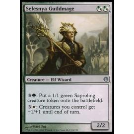 Selesnya Guildmage (Archenemy)