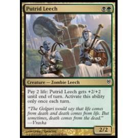Putrid Leech (DD: Jace vs. Vraska)