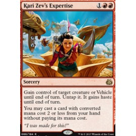 Kari Zev's Expertise