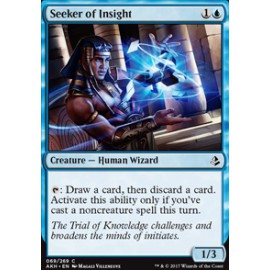 Seeker of Insight