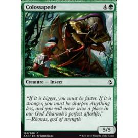 Colossapede